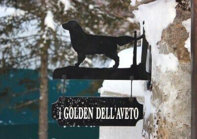 golden_aveto_chi_siamo_IMG_1478