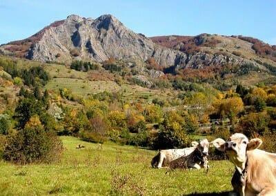 golden_aveto_chi_siamo_S. Stefano d'Aveto-M.te Groppo Rosso in autunno
