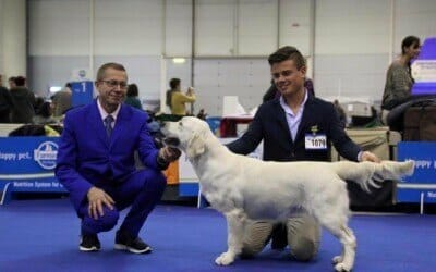 International Dog Show Rome