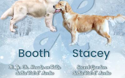 Sono nati i cuccioli di Booth e Stacey!