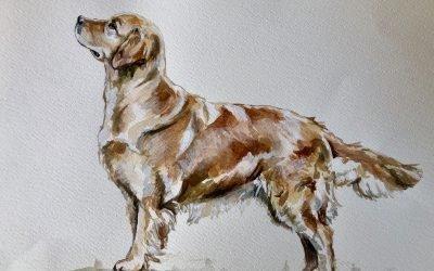 Un ritratto di Piper